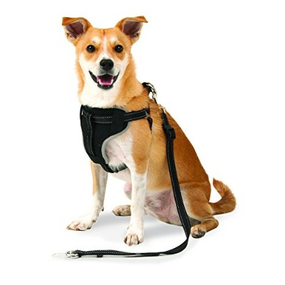 Petmate 11477 The Ultimate Travel Harness for Pets, Medium, Black by Petmate