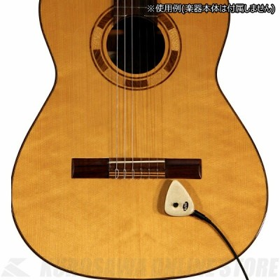 KNA Pickups AP-2 Acoustic Pick-up for guitar and other acoustic instrument - Maple cap (アコースティック楽器用汎...