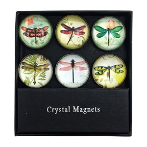 AssortedトンボガラスMagnets–Set of 6