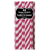 Bright Pink Paper Straws (24ct) by Amscan
