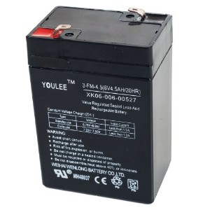 Lil' Rider 6V Rechargeable Battery for Models KB901 and YJ119 [並行輸入品]