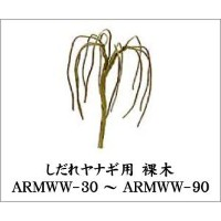 ARMWW-50 ヤナギ裸木4本入り