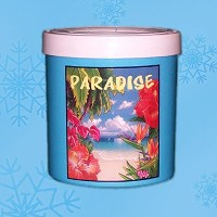 The Fridge Paradise Freezable Drink Cooler - by Lifoam Industries