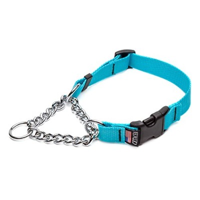 Cetacea Chain Martingale Dog/Pet Collar with Quick Release, Medium, Turquoise by Cetacea