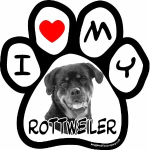 Imagine This 5-1/2-Inch by 5-1/2-Inch Car Magnet Picture Paw, Rottweiler by Imagine This