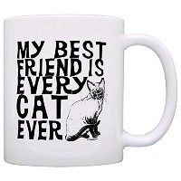 Cat DadギフトBest Friend is Every Cat Everペット所有者ギフトコーヒーマグティーカップ 11オンス na
