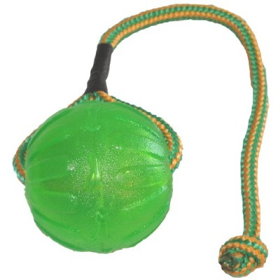 StarMark Everlasting Fun Ball on a Rope Dog Toy by StarMark