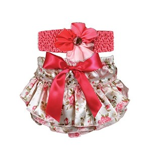 Stephan Baby Ruffled Diaper Cover and Curly Band Gift Set, Pink Roses, 6-12 Months by Stephan Baby