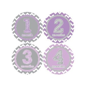 Months in Motion 024 Baby Month Stickers Baby Girl Purple Chevron Monthly Age by Months In Motion