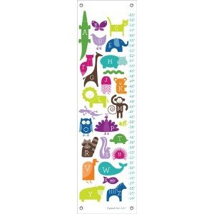 Oopsy Daisy ABC Animalia Rainbow by Ampersand Design Studio Growth Charts, 12 by 42-Inch by Oopsy...