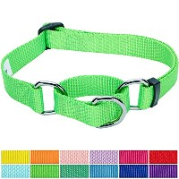 Blueberry Pet Safety Training Martingale Dog Collar, Neon Green, X-Small, Heavy Duty Nylon...