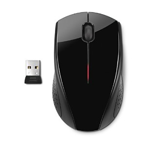 HP Inc. Wireless Mouse X3000
