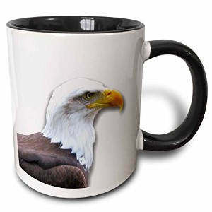 3dローズInspirationzStore写真 – Bald Eagle Bird Of Preyプロファイルonホワイト – Eagle Scout Gifts – Wild Animal野生生物...