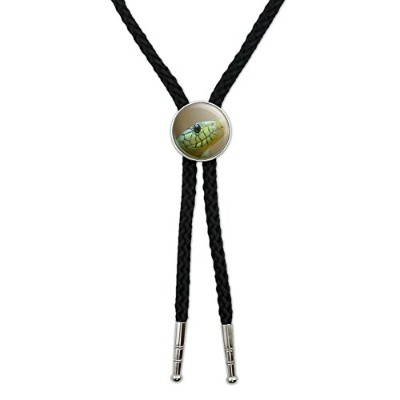 Green Snake Western SouthwestカウボーイネクタイBow Bolo Tie
