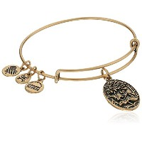 Alex and Ani Because I Love You , Sister II拡張可能なバングルブレスレット One Size