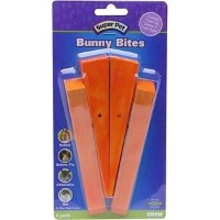 Super Pet Bunny Bites Pre-Drilled Wood Chew Treats for Pet Critters (Carrot, 4 pack) by Bunny Bites