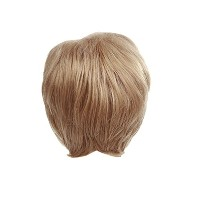 Zhhlinyuan 良質 Fashion Party Synthetic Wigs Elegant Women's Short Hair Wigs RM3538