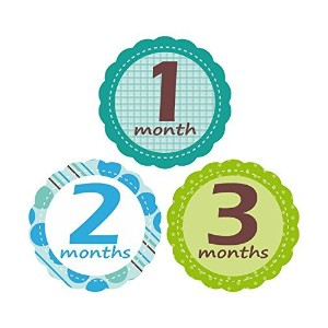 'MuchMore' Baby Monthly Stickers for Boy, Bodysuit Stickers ,Onesie Stickers Great Shower Gift...