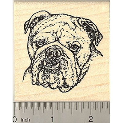 Bulldog Rubber Stamp, Realistic Bull Dog, Detailed Artwork