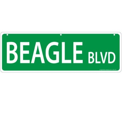Imagine This Beagle Street Sign by Imagine This