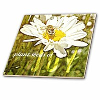 Patricia Sanders花–Daisy and Bee Plant Seeds of joy- flowers-花アート–タイル 12-Inch-Ceramic ct_44698_4