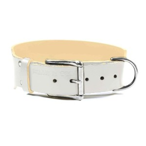 Dean & Tyler B and B Basic Leather Dog Collar with Strong Nickel Hardware 32 by 2-Inch Fits 30 to