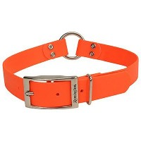 【送料無料】【Remington Orange 1-Inch by 24-Inch Waterproof Dog Collar by Remington】 b0009ywh3k