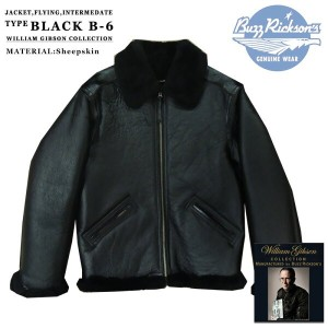 BUZZ RICKSON'S(バズリクソンズ) TYPE BLACK B-6 Lot.BR80251-01)BLACK