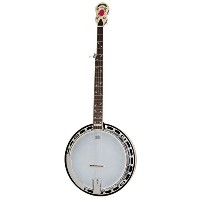 Epiphone Bluegrass Collection Mayfair 5-String Banjo