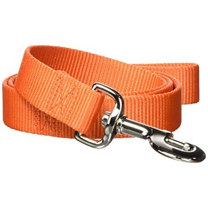 Hamilton Pet Company - Single Thick Nylon Lead- Mango 1 X 4 - SLO 4MA