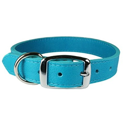 OmniPet 6267-TQ20 Luxe Leather Dog Collar, Turquoise by OmniPet