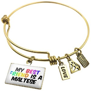 Expandable Wire Bangle braceletmy Best Friend a Maltese Dogからイタリア、Neonblo