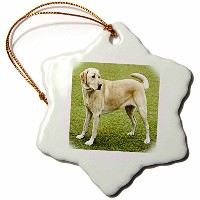 3dローズFlorene犬–イエローLab on Lawn–Ornaments 3 inch Snowflake Porcelain Ornament orn_49373_1