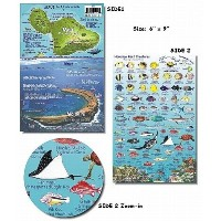 Molokai Hawaii Reef Fish and Creature Guide by Frankos