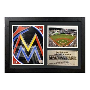 Encore Select 125 – 22 MLB Miami Marlins Framedロゴとスタジアム印刷、12-inch by 18インチ