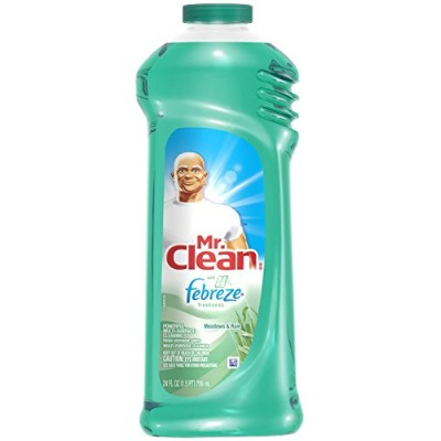 Mr. Clean Multi-Purpose Liquid Cleaner, Meadows & Rain, 24 oz by Mr. Clean