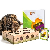 Cat Amazing - Best Cat Toy Ever! Interactive Treat Maze & Puzzle Game for Cats by Cat Amazing