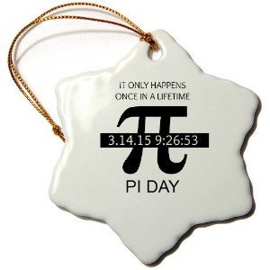 3drose BrooklynMeme Sayings–Pi Day Once in a Lifetime–Ornaments 3 inch Snowflake Porcelain...