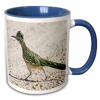 【3drose Mug _ 92557 _ 6 New Mexico Bosque Del Apache Roadrunner Bird us32 bja0086 Jaynesギャラリー...