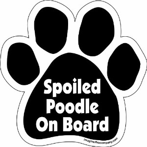 Imagine This Paw Car Magnet, Spoiled Poodle on Board, 5-1/2-Inch by 5-1/2-Inch by Imagine This