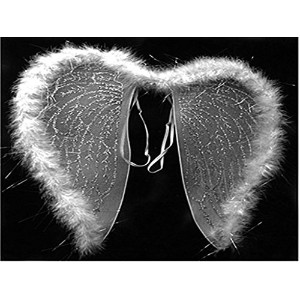 Kid 's Angel Wings