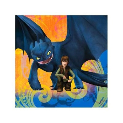 How To Train Your Dragon Party Beverage Napkins by Hallmark