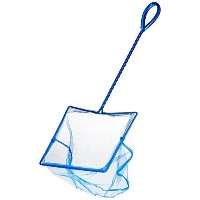 High Quality 8 Inch Blue Fine Nylon Net with 12 Inch Handle