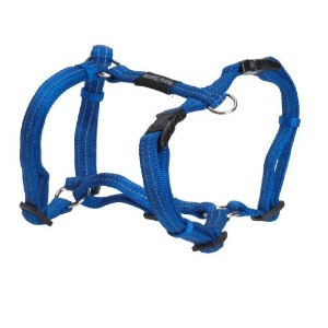High Quality H-harness, 2 cm x 20-30 in, blue