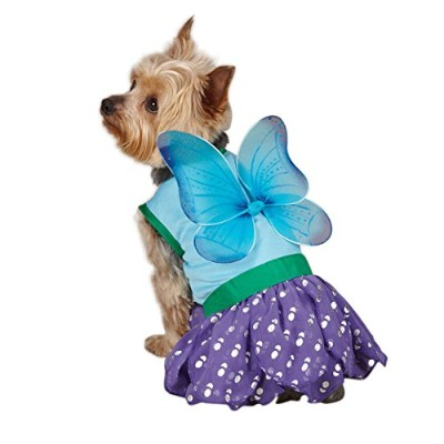 Casual Canine Polyester Woodland Fairy Dog Costume, Large, 20-Inch, Blue by Casual Canine
