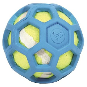 JW Pet Company 42204 Proten Hol-ee Roller Lime Green Tennis Ball, Assorted Colors (Small, Green/Red/Blue) by JW Pet