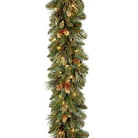 National Tree 9 Foot by 10 Inch Carolina Pine Garland with 27 Flocked Cones and 100 Clear Lights ...