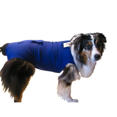 Surgi Snuggly E Collar Alternative, Created By A Veterinarian Specifically to Fit Your Dog, Large...