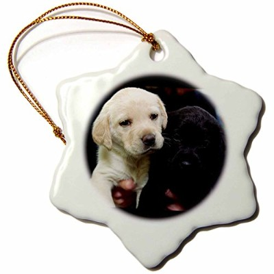3drose Dogs Labrador Retriever – ブラックand Yellow Lab Puppies – Ornaments 3 inch Snowflake Porcelain...