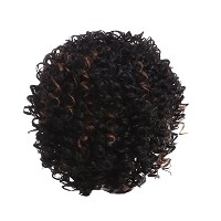 Zhhlaixing 高品質の Elegant Women's Fashion Party Synthetic Wigs - Short Curly Wigs RM-W921